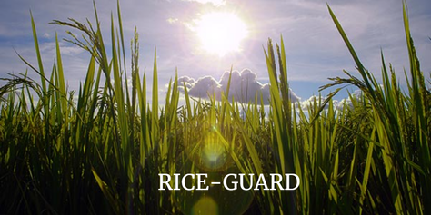 RICE-GUARD