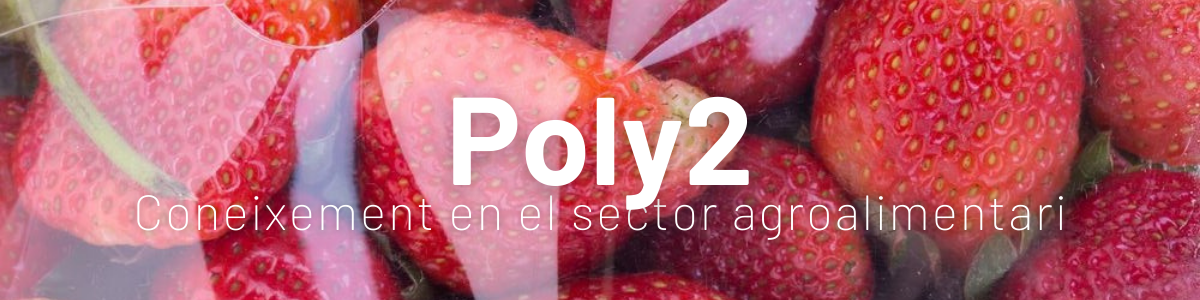 poly2.png