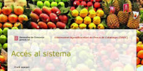 observatori-agroalimentari-preus-catalunya.png